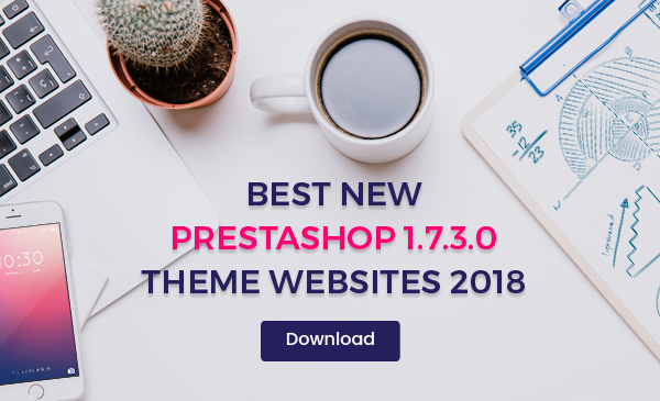 Best Magento 2 Themes 2017