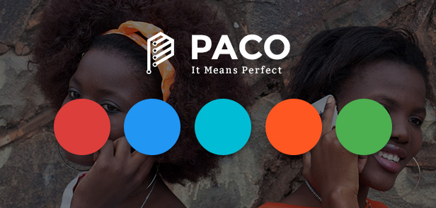Paco - Responsive WooCommerce WordPress Theme - Unlimited Color