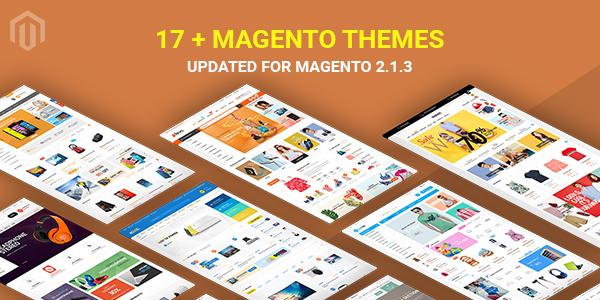 Magento 2.1.3 Themes