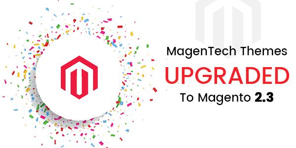 Magento 2.3 Themes