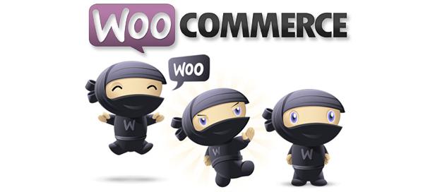 SW Maxshop - Woocommerce Integration